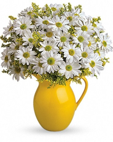 Teleflora's Sunny Day Pitcher of Daisies Flower Arrangement