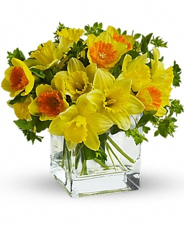 Teleflora's Daffodil Dreams Bouquet
