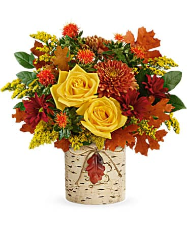 Teleflora's Golden Birch Bouquet