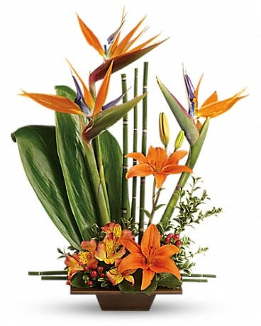 Teleflora's Exotic Grace Flower Arrangement