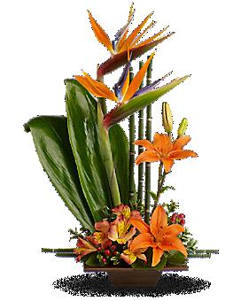 Teleflora's Exotic Grace - Flower Arrangement