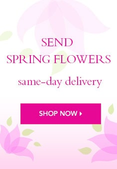 Spring Flowers Delivery