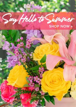 Summer Flowers Delivery