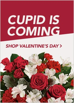 Shop Valentine's Day Flowers