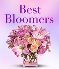 best-bloomers-thumbnail-sm