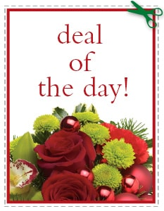 Christmas Flowers - Deal of the Day - Biggest Freshest Arrangement