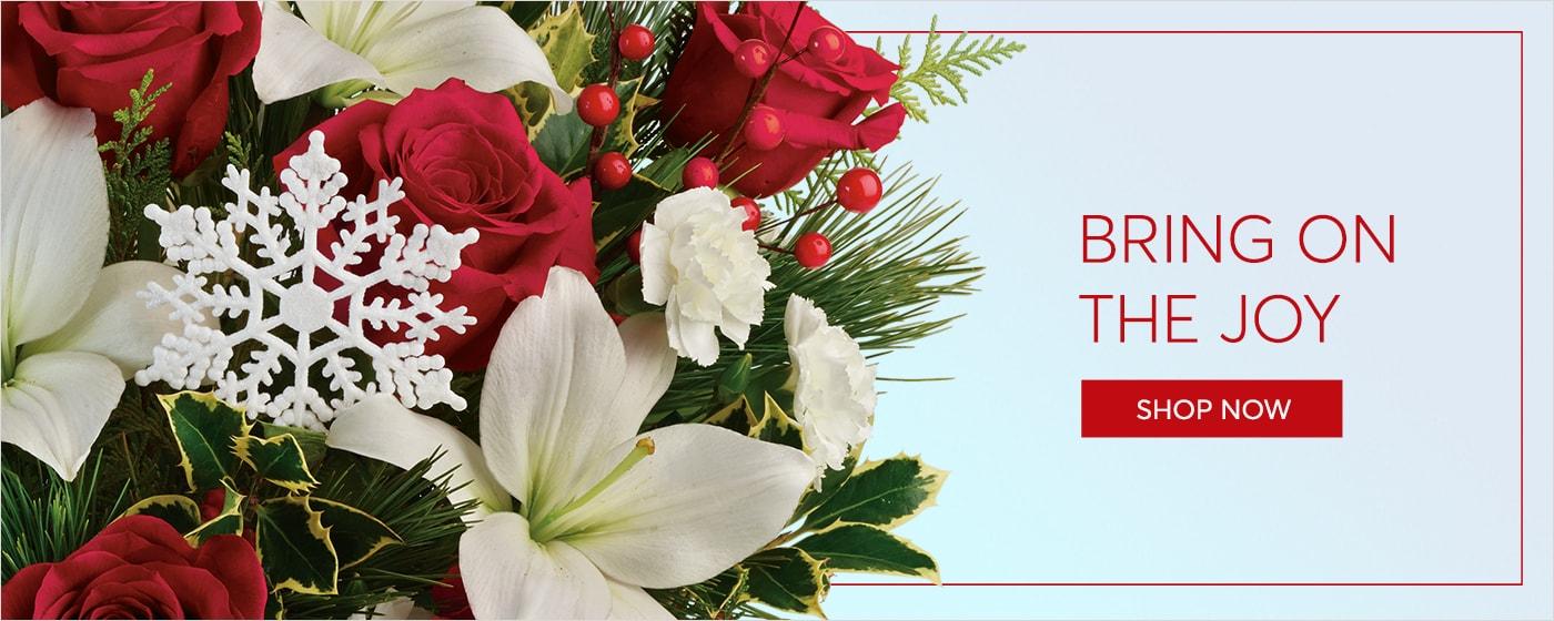 Shop Christmas Flowers