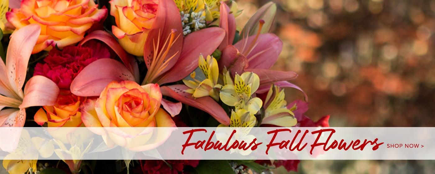 Shop Fall Flowers