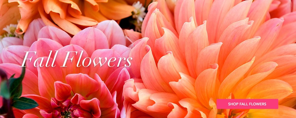 Deliver Fall Flowers
