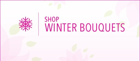 Shop Winter Flowers