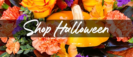 Shop Halloween Flowers