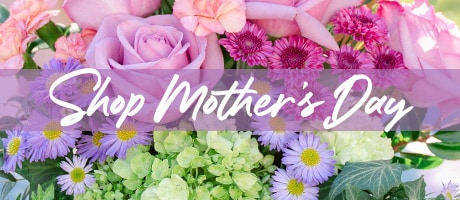 Shop Mother's Day Flowers