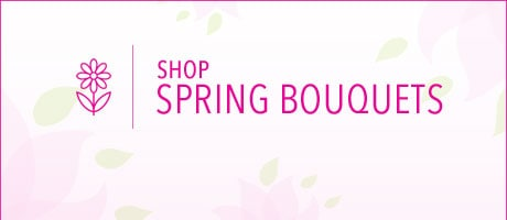 Spring Bouquets Delivery to Burlingame