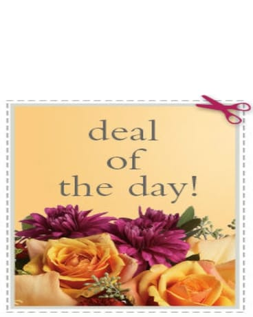 Deal of the Day $35.00