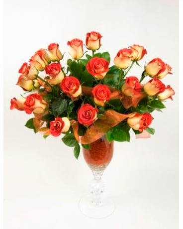 Boca Raton Florist-Exclusive-Two-Dozen-Roses