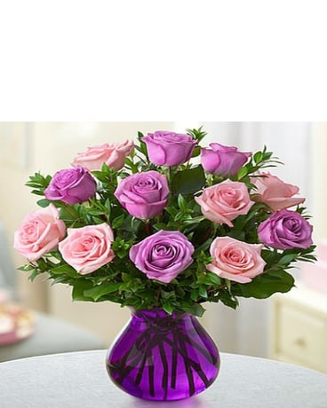 Rose Romance PInk and Purple