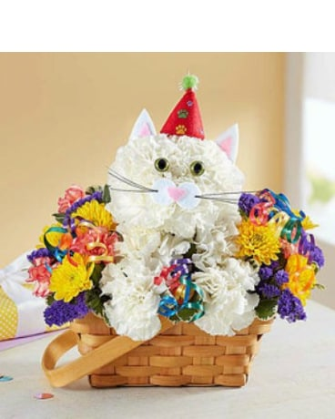 Purrfect Party Cat by 1800flowers