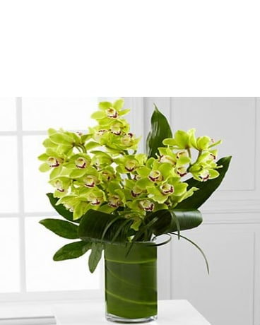 Luxury Orchid Bouquet - 8 Stem