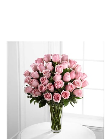 Pink Rose Bouquet - Exquisite 36 STEMS