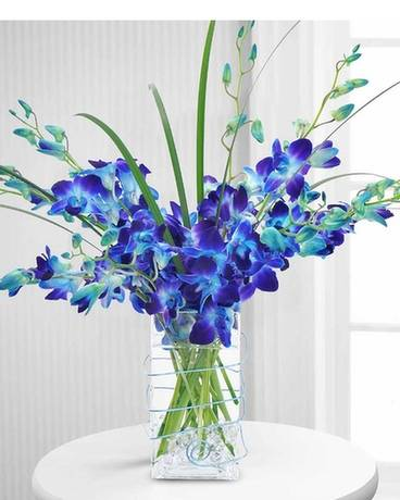 TRUE BLUE ORCHIDS Flower Arrangement