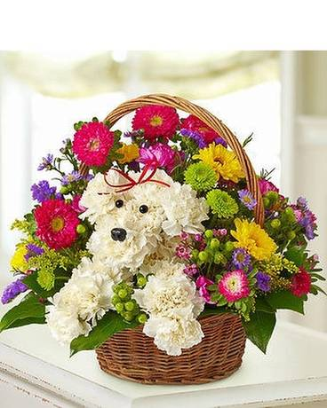 CUTE DOG IN BASKET Flower Arrangement