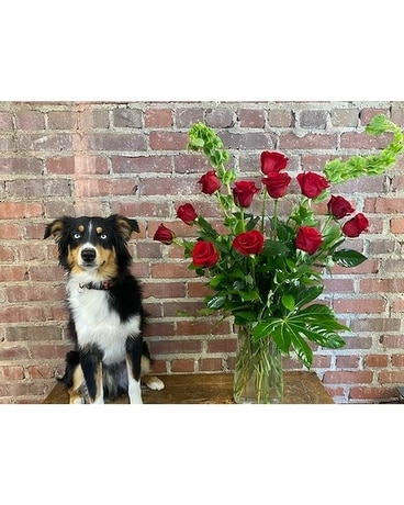 Classic Long-Stemmed Red Roses Flower Arrangement