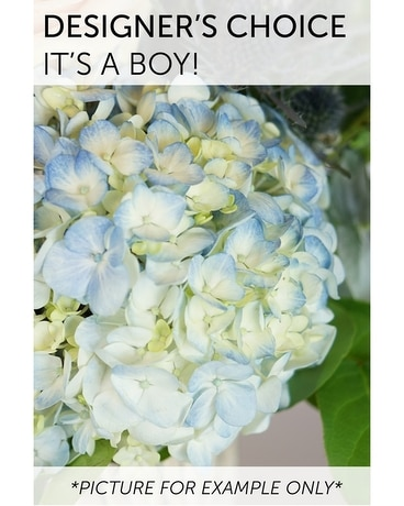 Designer's Choice - It's a Boy! Flower Arrangement
