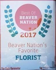 Beaver Nation 2017
