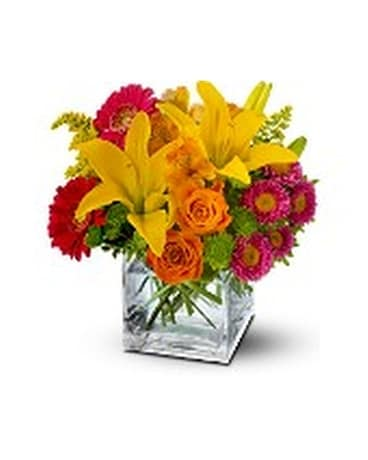 Teleflora's Summertime Splash Flower Arrangement
