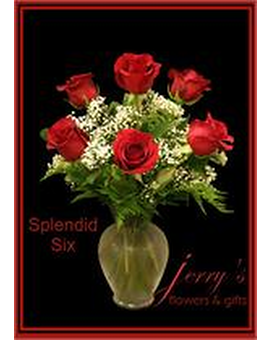 Pretty Half-Dozen Roses Flower Arrangement