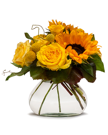 Field of Yellow Flower Arrangement
