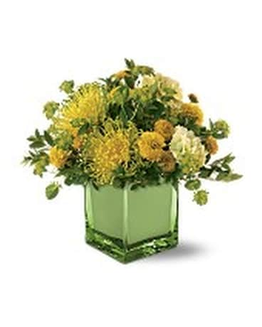 Teleflora's Whisper of Spring Bouquet Flower Arrangement