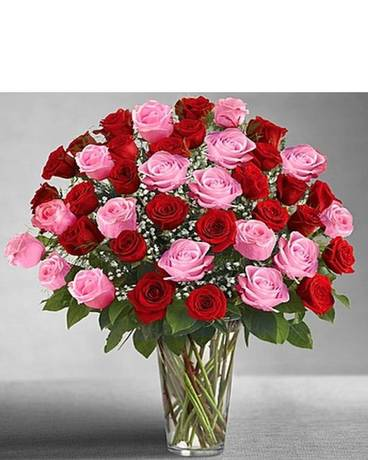 48 Ultimate Elegance Long Stem Pink & Red Roses Flower Arrangement