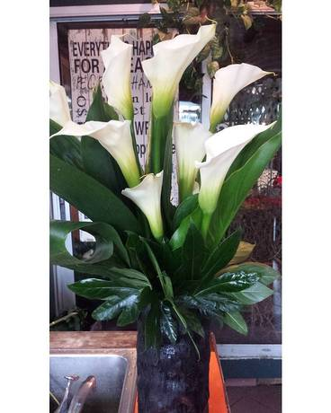 Calla Lilies Flower Arrangement