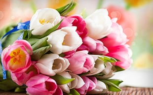 Picture of Flower Delivery
