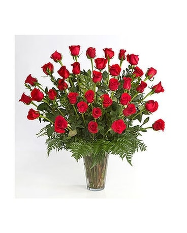 3 Dozen Red Roses Arranged