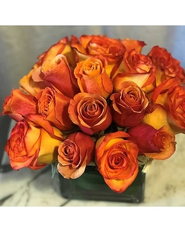 Circus & Citrus Roses Flower Arrangement