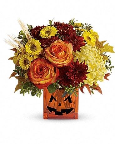 teleflora s halloween glow in lehigh acres fl priceless flower shop