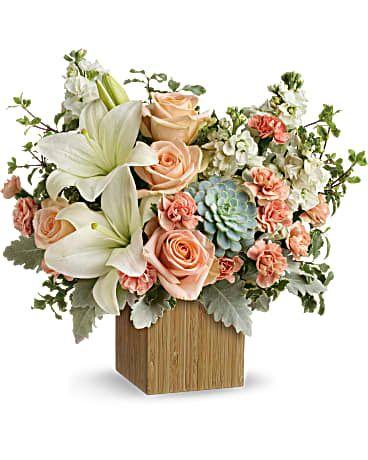 April 20, 2021 <br>Sunshine & Succulents Design Class