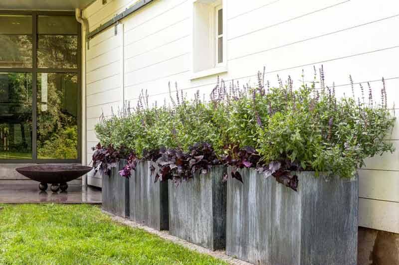 Modern-Container-Garden