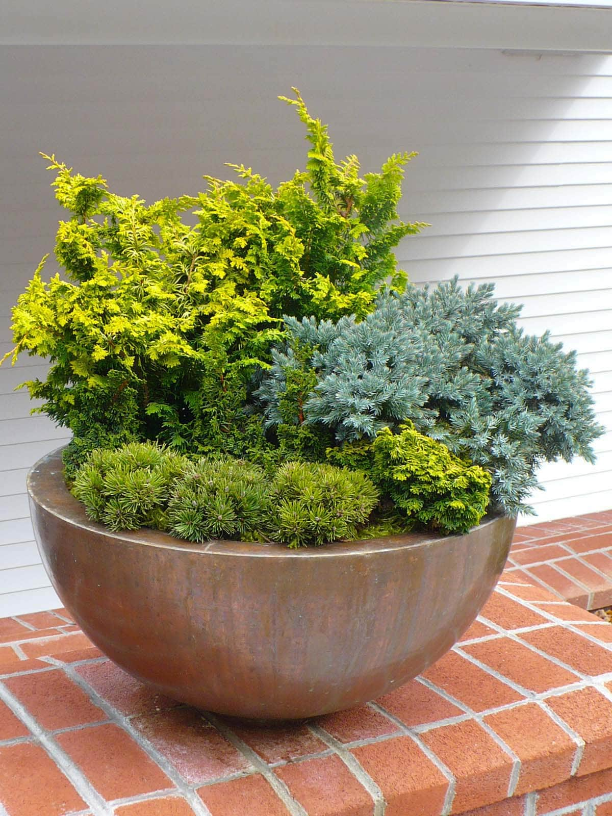 Winter Container Plantings