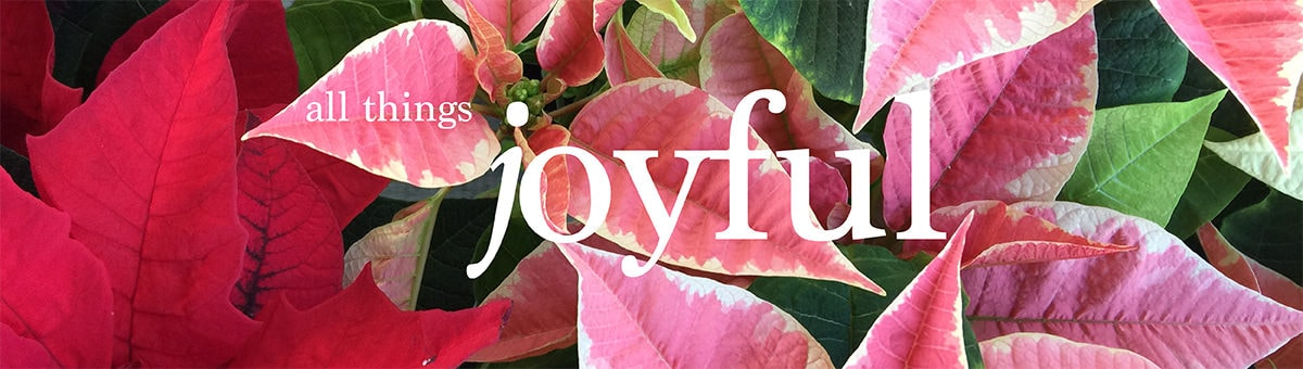 Let there be joy this holiday!