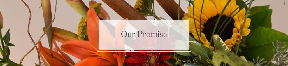McShan Our Promise Banner
