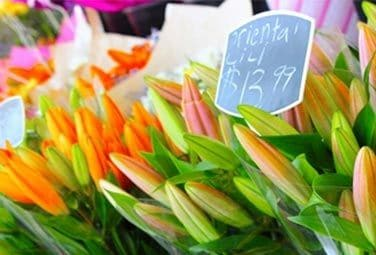Choose a Local Florist - Support Local Economy