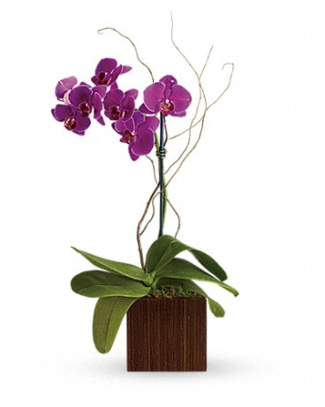 Bamboo Elegance Flower Arrangement