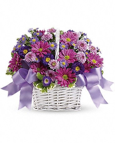 Daisy Daydreams (T11Z105A) Basket Arrangement