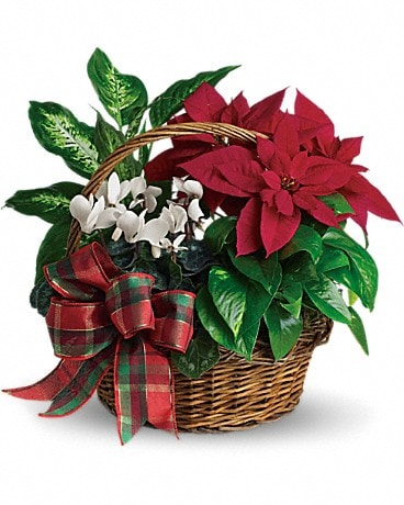 Holiday Homecoming Basket T123-2A Bouquet
