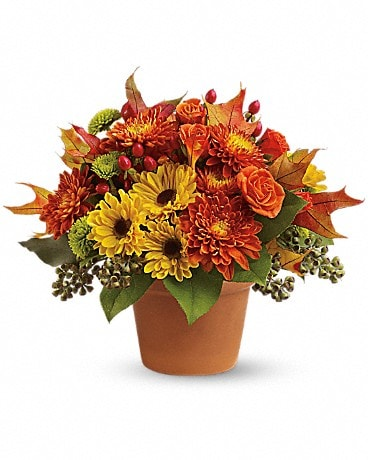 Sugar Maples Flower Arrangement