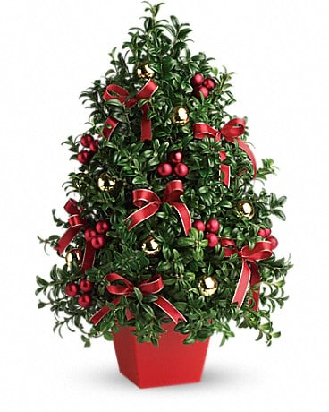 Christmas flowers delivery silver spring md aspen hill florist deck the halls tree mightylinksfo