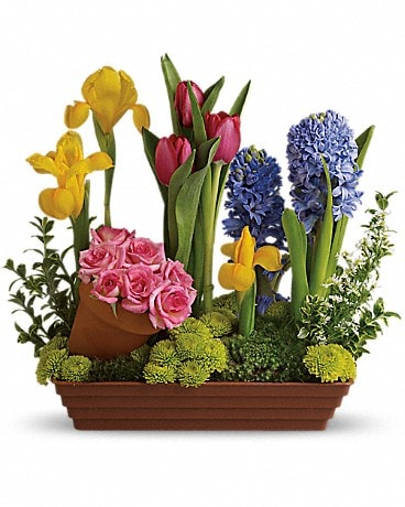 Bulb Garden Flower Arrangement